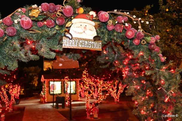 Christmas Time... !!!